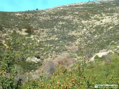 Macizo Cabeza Arcón,El Pendón;fin de semana senderismo iniciación turismo rural